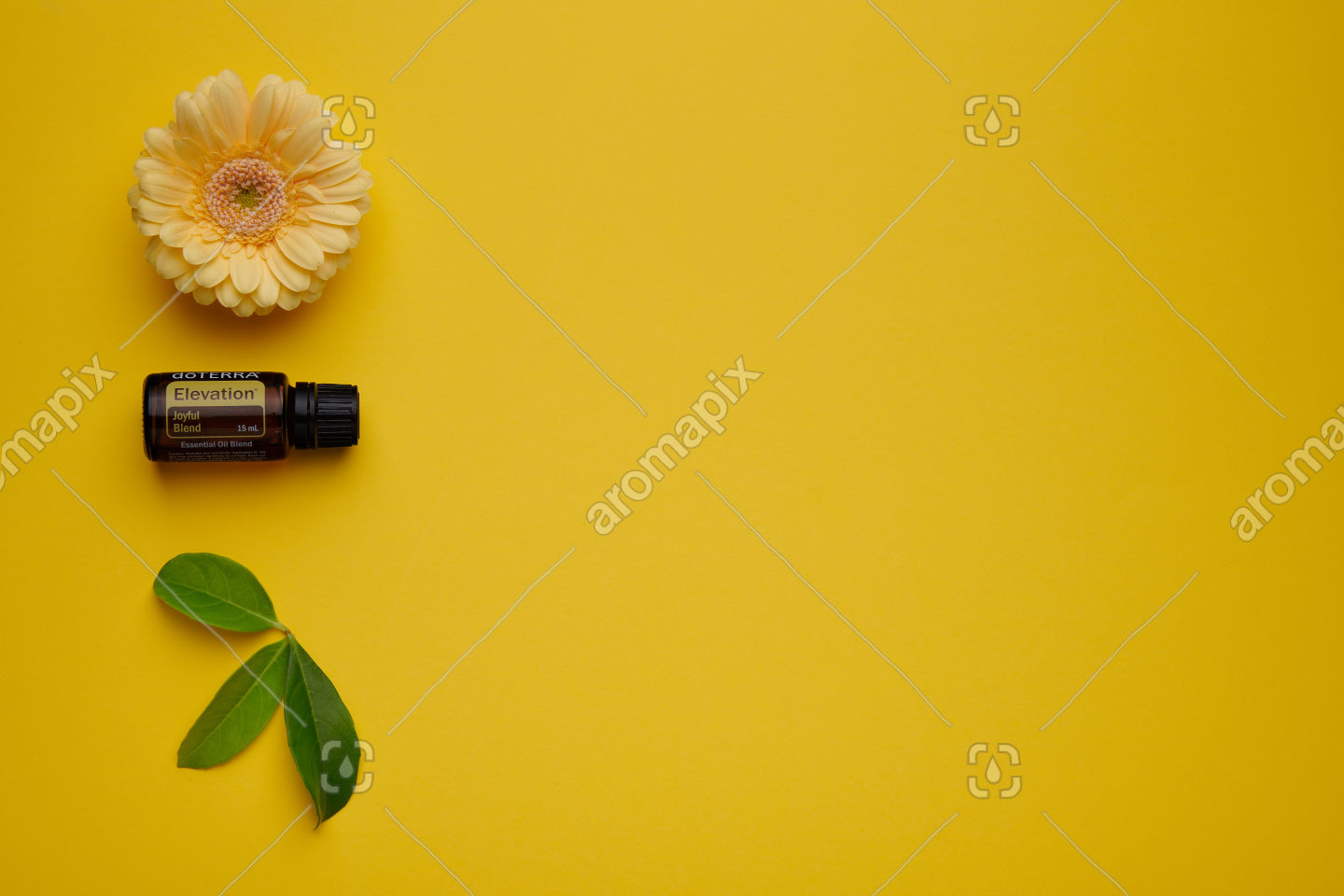 doTERRA Elevation with flowers and leaves on yellow
