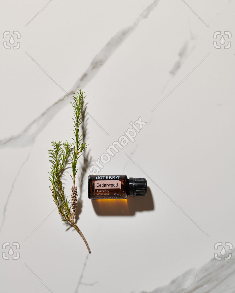 doTERRA Cedarwood in sunlight on marble