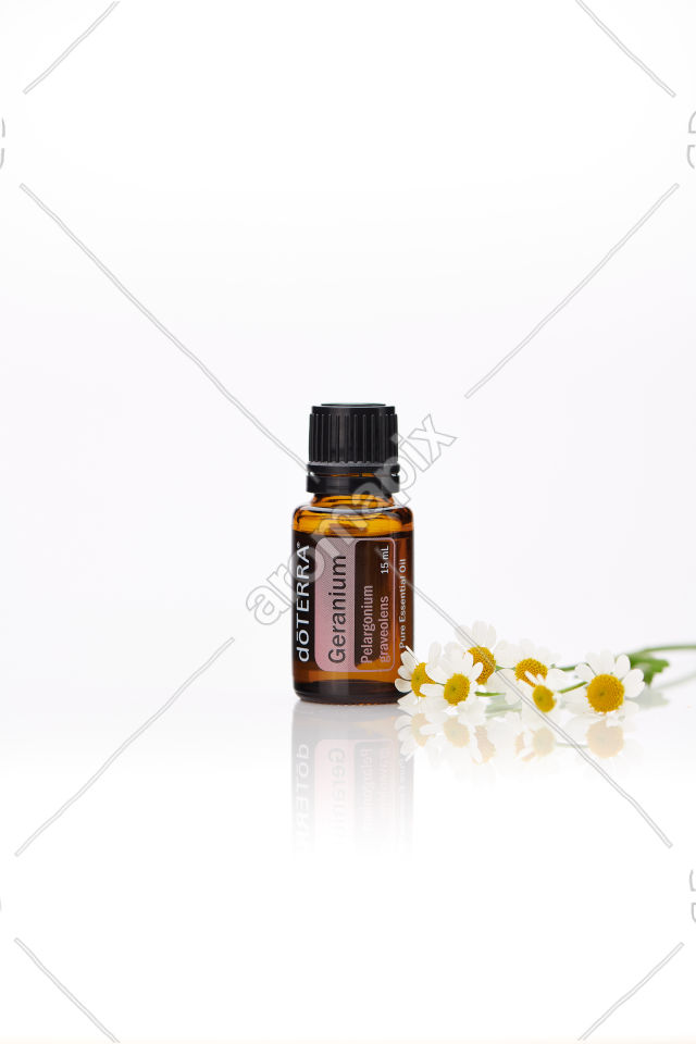doTERRA Geranium with flowers on white