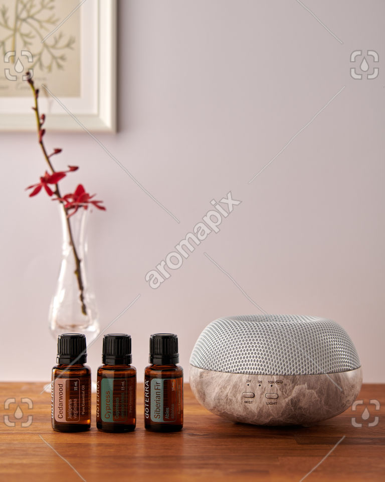 doTERRA Brevi Stone diffuser with Cedarwood, Cypress and Siberian Fir