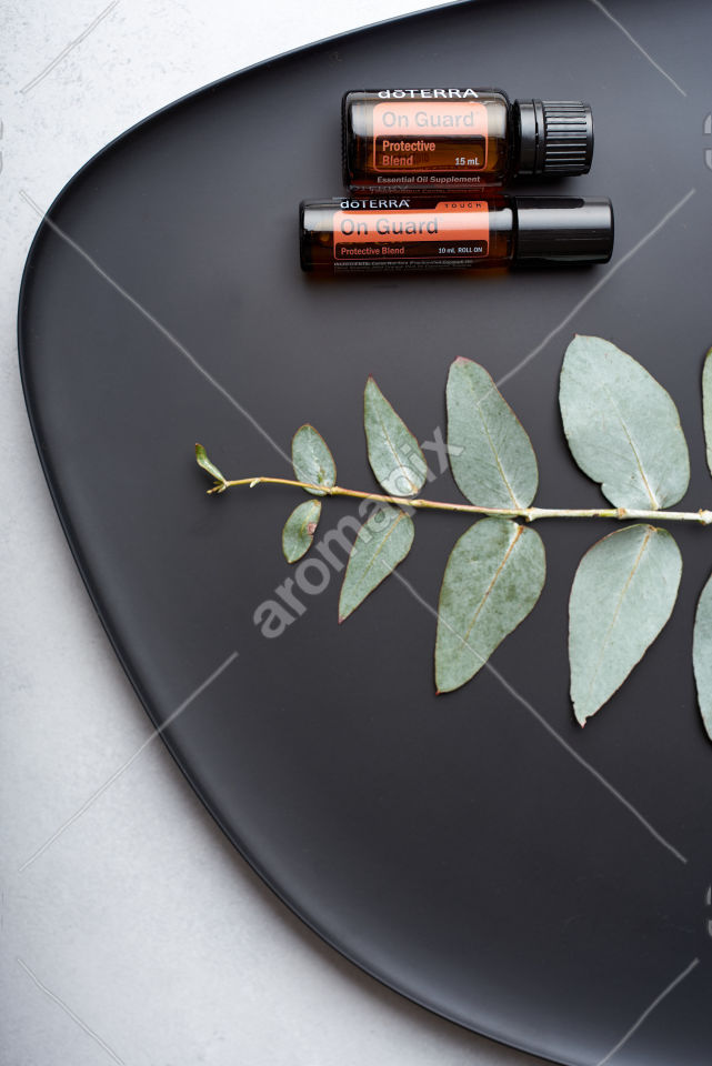 doTERRA On Guard, On Guard Touch and eucalyptus leaves on black plate