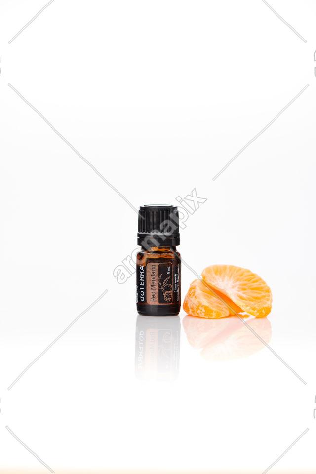 doTERRA Red Mandarin with mandarin on white