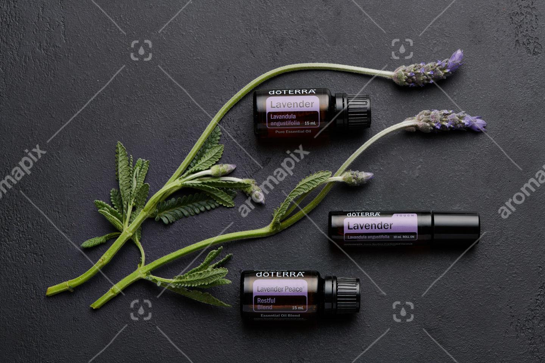 doTERRA Lavender, Lavender Touch,  Lavender Peace and lavender flowers on black background