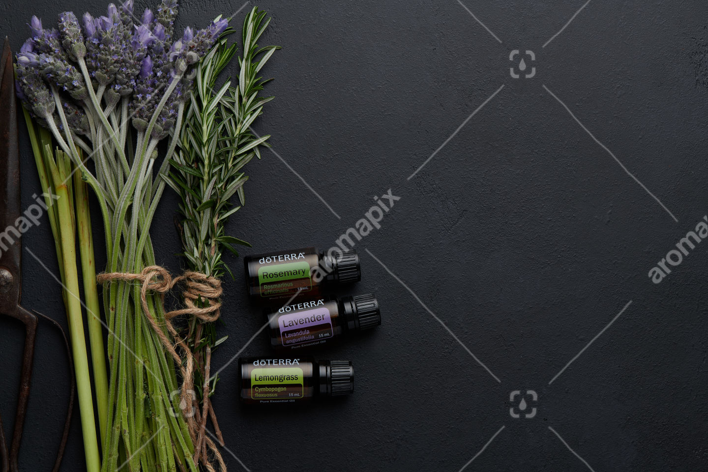 doTERRA Rosemary, Lavender and Lemongrass  with lavender and rosemary flowers and lemongrass flowers on black