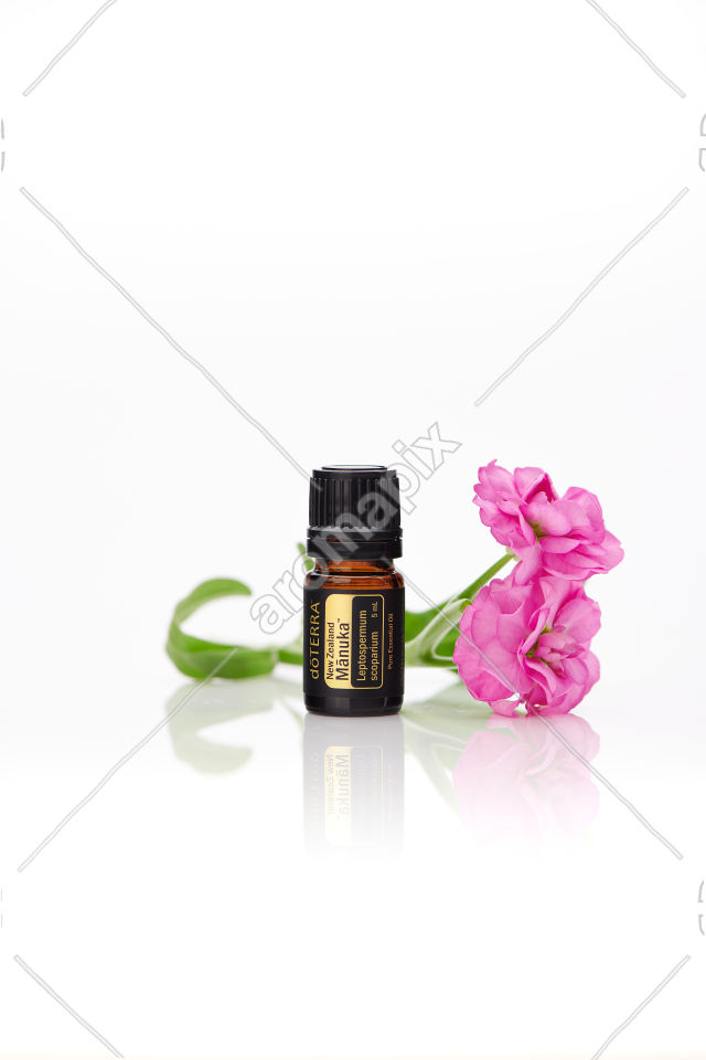 doTERRA Manuka with flowers on white