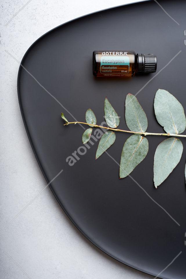 doTERRA Eucapyptus and eucalyptus leaves on black plate