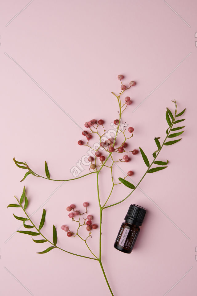 doTERRA Pink Pepper and pink peppercorn on a pink and white background