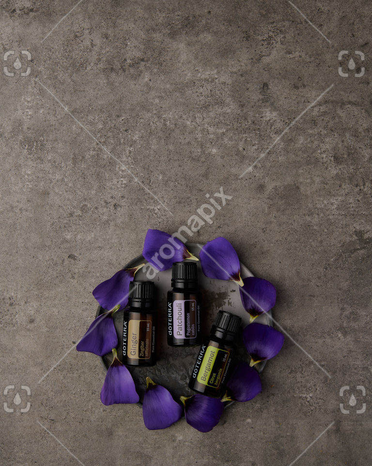 doTERRA Ginger, Patchouli and Bergamot with purple flowers on gray