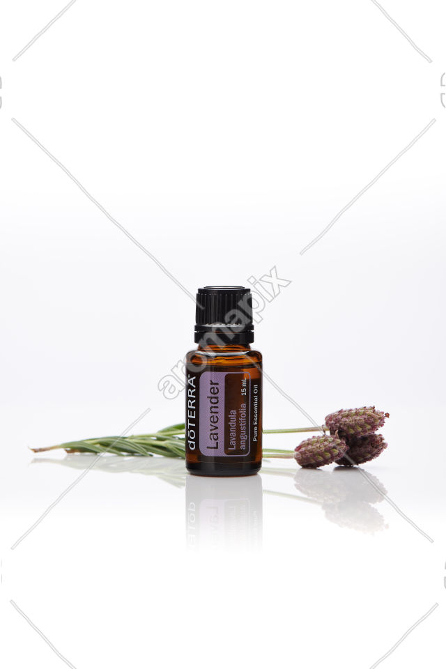 doTERRA Lavender with lavender on white