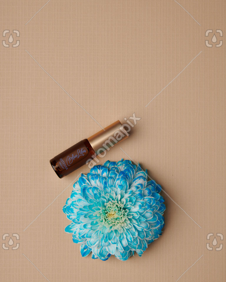 doTERRA Blue Lotus Touch 4ml with a flower on tan