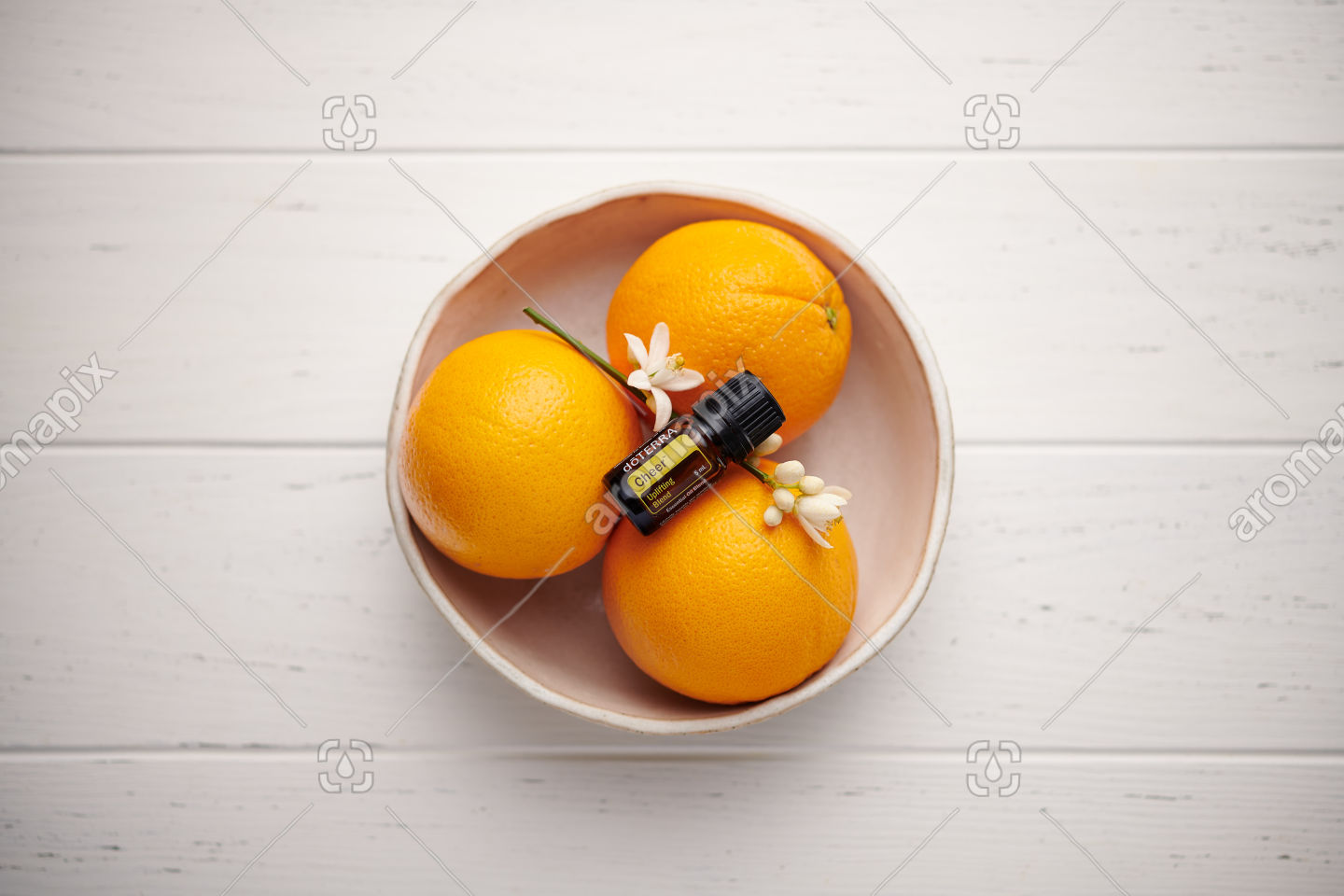 doTERRA Cheer with seville oranges and orange blossoms on white