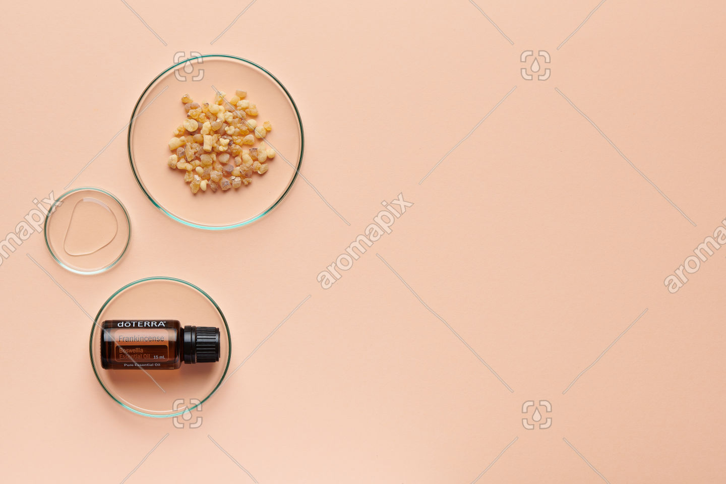 doTERRA Frankincense with frankincense resin on pale orange