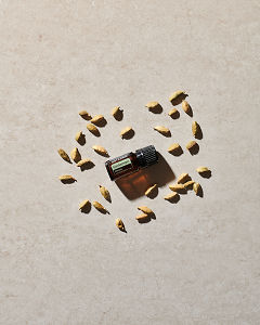 doTERRA Cardamom essential oil and cardamom seed pods scattered on a beige stone background in sunlight.