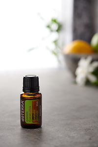 doTERRA Lemon Eucalyptus on a bench in a rustic setting near a window.