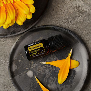 doTERRA Helichrysum essential oil and flower petals on a ceramic plate and part of a yellow flower on a ceramic plate on a grey stone background.