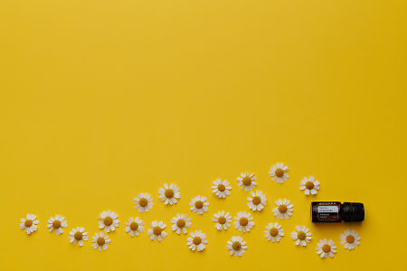 doTERRA Roman Chamomile with scattered chamomile flowers on a yellow card stock background.