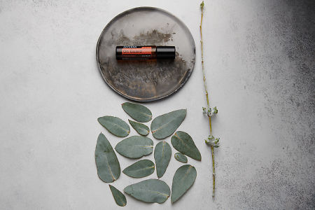 doTERRA On Guard Touch on distressed ceramic plate with eucalyptus leaves on white concrete background.