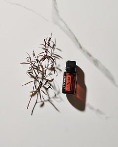 doTERRA On Guard essential oil blend and a plant stem in direct sunlight on a white marble background.