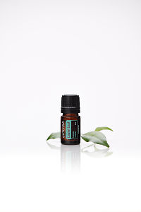 doTERRA Laurel Leaf with laurel leaves on a white background with reflection.