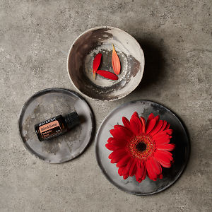 doTERRA Slim and Sassy on a ceramic plate, a red flower on a ceramic plate and petals in a small ceramic bowl on a grey stone background.
