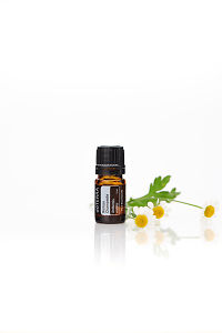 doTERRA Roman Chamomile with chamomile flowers on a white background with reflection.