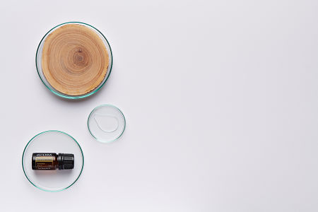 doTERRA Sandalwood in a petrie dish with sandalwood and oil in petri dishes on a white background.