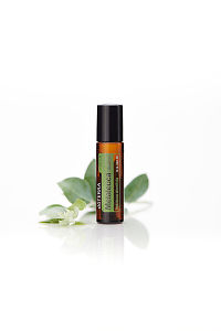doTERRA Melaleuca Touch with leaves on a white background with reflection.