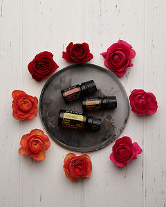 doTERRA Cinnamon Bark, Motivate and Lemon on a ceramic plate with red, pink and orange roses on a white wooden background.