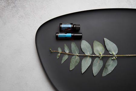 doTERRA Breathe, Breathe Touch and eucalyptus leaves on black melamine plate with white concrete background.