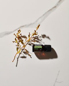 doTERRA Summer Savory essential oil and a plant stem in sunlight on a white marble background.