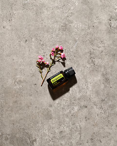 doTERRA Bergamot essential oil with small pink flowers lying on gray stone in sunlight.