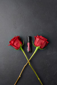 doTERRA Rose with two rose stems on a black stone background.