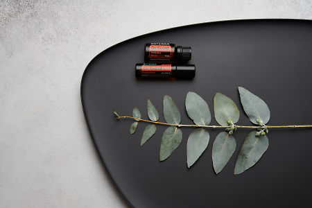 doTERRA On Guard, On Guard Touch and eucalyptus leaves on black melamine plate with white concrete background.