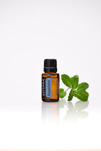 doTERRA Peppermint with peppermint leaves on a white background with reflection.