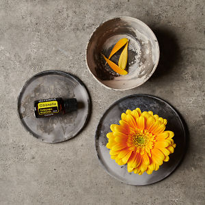 doTERRA Citronella on a ceramic plate, a yellow flower on a ceramic plate and petals in a small ceramic bowl on a grey stone background.
