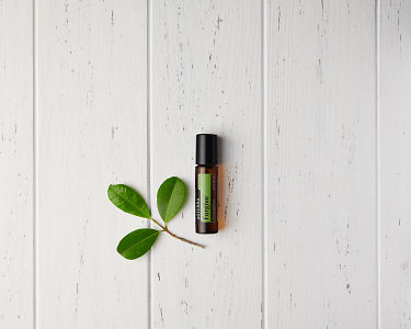 doTERRA Forgive Touch with leaves on a white wooden  background.