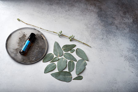 doTERRA Breathe on distressed ceramic plate with eucalyptus leaves on white concrete background.