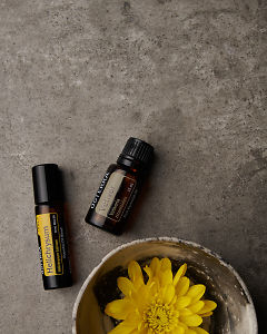 doTERRA Helichrysum Touch and Vetiver with a yellow flower in a bowl on a gray stone background.