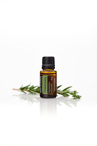 doTERRA Rosemary with leaves on a white background with reflection.