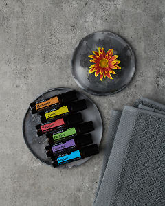 doTERRA Emotional Aromatherapy Touch Kit and a flower on gray ceramic plates on a gray stone background.