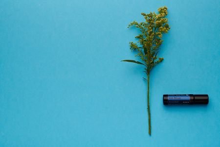 doTERRA Ice Blue Roll On with yellow flowers on a blue card stock background.