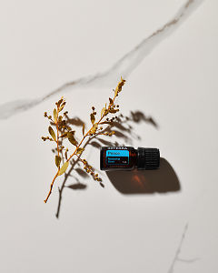 doTERRA Peace essential oil and a plant stem in sunlight on a white marble background.