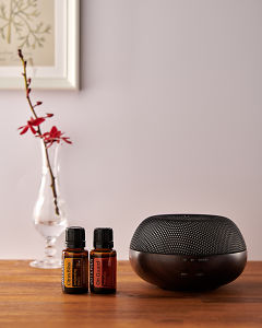 doTERRA Brevi Walnut diffuser with Citrus Bliss and On Guard essential oils on a side table.