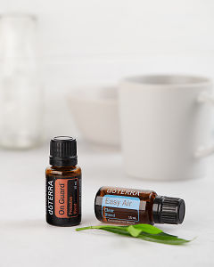 doTERRA On Guard 15ml and doTERRA Easy Air 15ml with leaves on a white background.
