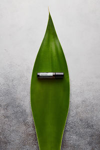 doTERRA Jasmine Touch sitting in a large green leaf on a white concrete background.