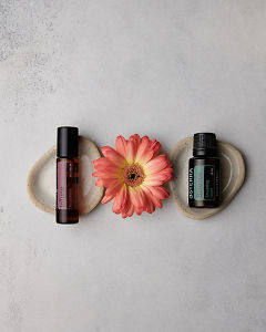 doTERRA InTune 10ml and doTERRA Balance 15ml with a peach colored Gerbera on a concrete background.