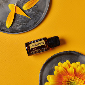 doTERRA Clementine essential oil, flower petals on a ceramic plate and a yellow flower on a ceramic plate on a yellow textured background.