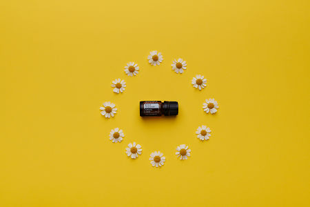doTERRA Roman Chamomile in a circle of chamomile flowers on a yellow card stock background.