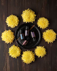 doTERRA Ylang Ylang, Clary Sage, Geranium and Lavender on a black ceramic plate surrounded by yellow chrysanthemums on a brown wooden background.