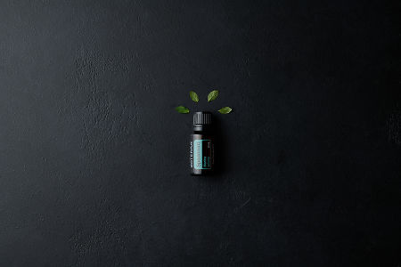 doTERRA Spearmint with mint leaves on a black stone background.